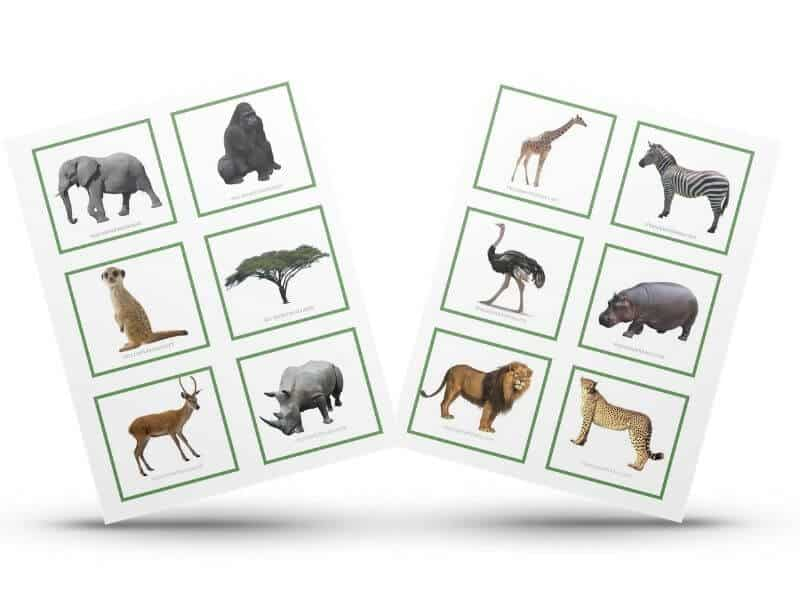 Free Printable Safari Animal Matching Cards The Purposeful Nest